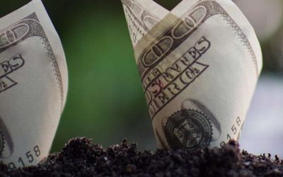 sustainble-finance
